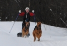 Ada skiing with the dogs.